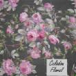 FloralPrintsChecks/13wCeladon1.jpg